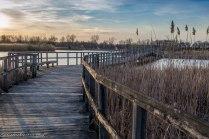 Marsh Sunset - Crosswinds Marsh